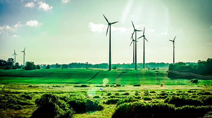 How Renewable Energy Can Boost Your SME
