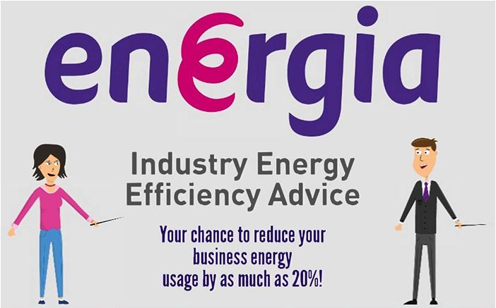 Industry Energy Efficiency Advice Infographic