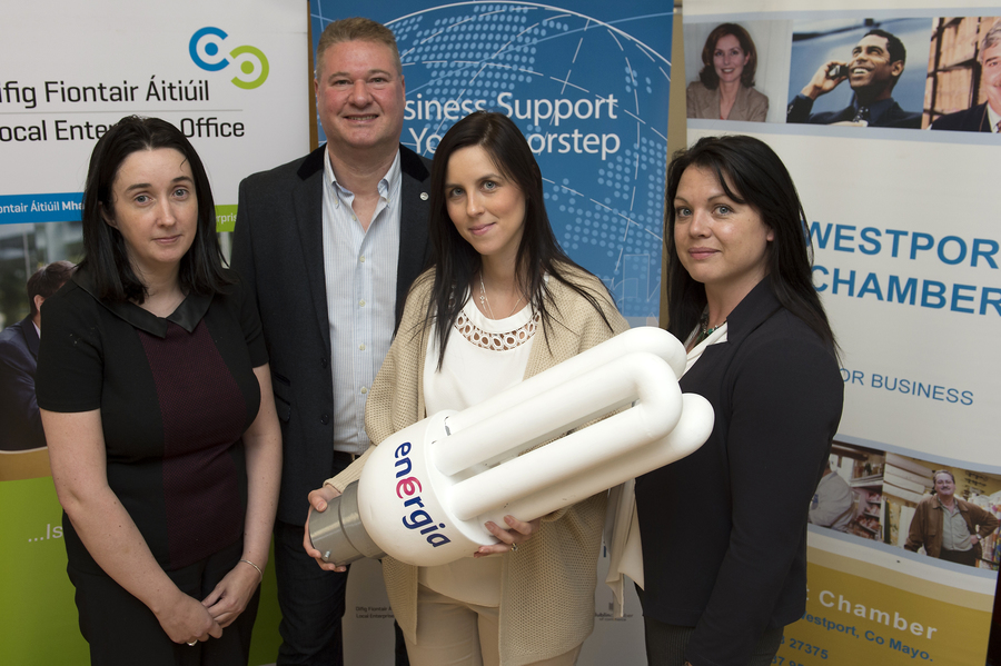 Mayo firms get energised about increasing efficiency